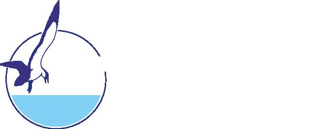 CW Logo white larger